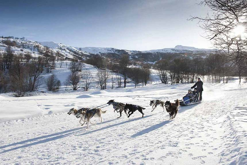 Easter is the perfect time to enjoy Dog Sledding in St Martin de Belleville