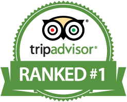 Chalet Broski is ranked Number 1 on Trip Advisor